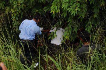 Cadáver en zona boscosa