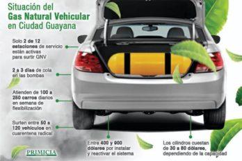 Pocas E/S despachan GNV y agudizan el problema de combustible en Guayana