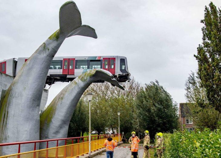 La cola de una ballena evita una tragedia en el metro — VÍDEO