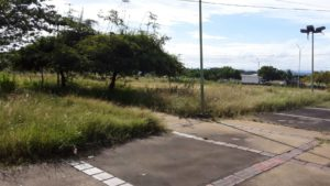 Sin anuncio de inscripciones en UDO San Félix