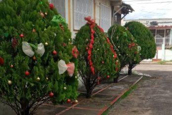 Ciudadanos crean ambiente navideño en Moreno de Mendoza