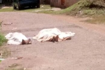 Hallan tres cadáveres en el sector San Miguel de El Callao