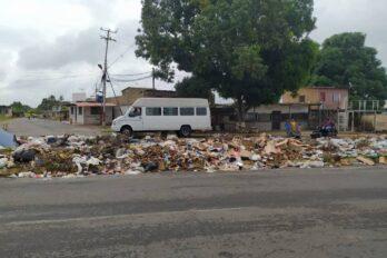 Vecinos solicitan saneamiento en la avenida Dalla Costa